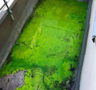 Lokalizacja przecieku wody przy pomocy kontrastu/barwnika UV
